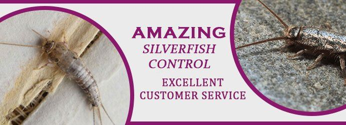 Silverfish Control Services Melbourne