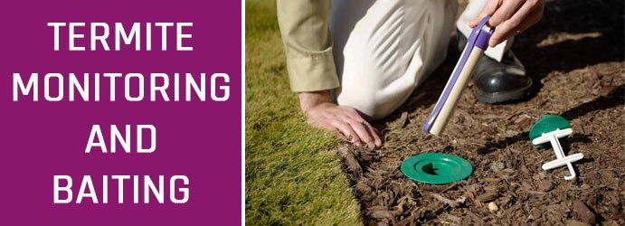 Termite Monitoring and Baiting Parklands