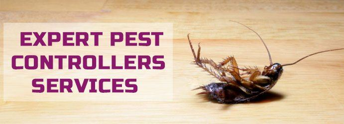 Expert Pest Controllers