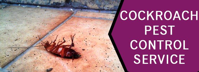 Cockroach Pest Control Service In Gordon