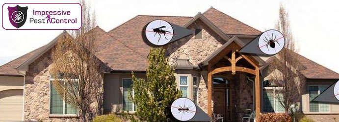 Residential Pest Control White Mountain