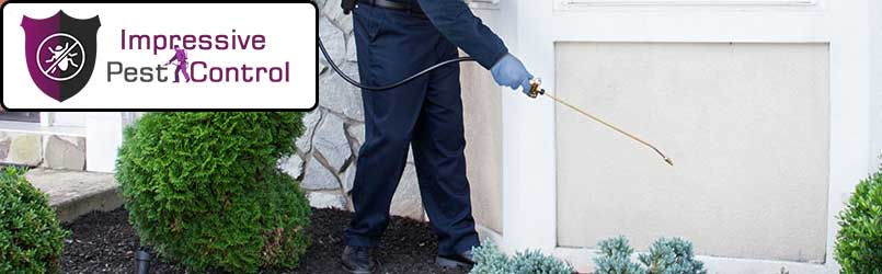 Professional Pest Control Wyoming