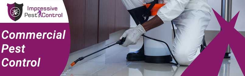 Commercial Pest Control Homewood