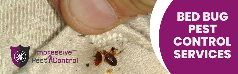 Bed Bug Pest Control Rosny Park