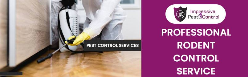 Professional Rodent Pest Control Services
