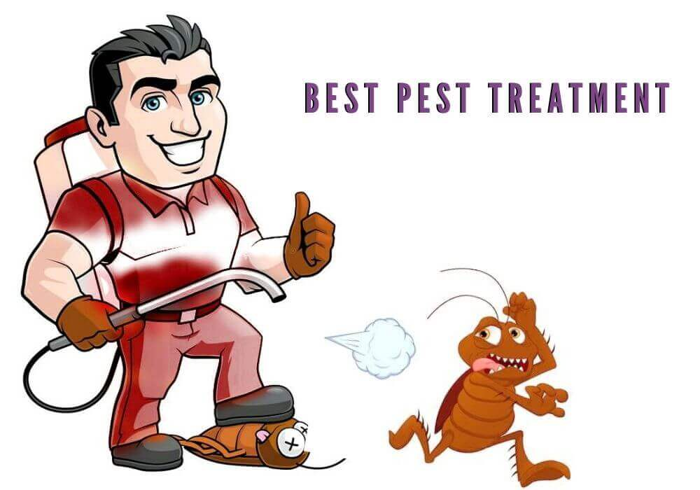 impressive pest treatment