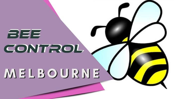 bee-control-Melbourne