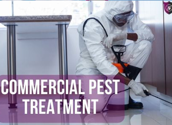 residential-pest-treatment