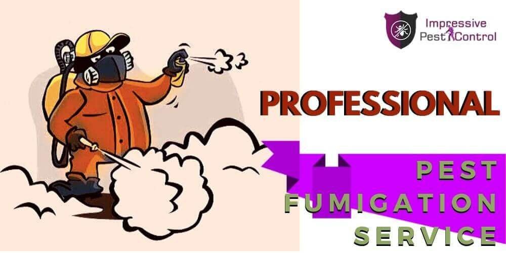 pest fumigation service