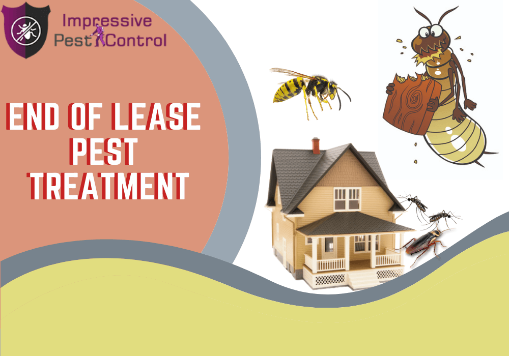 end of lease pest control