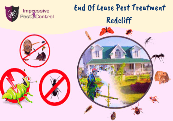 End Of Lease Pest Treatment