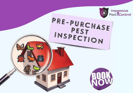 Per purchase pest Inspection