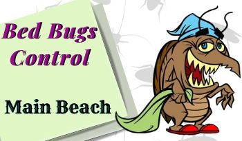 bed bugs control Main Beach
