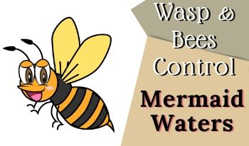 bees-control-Mermaid Waters