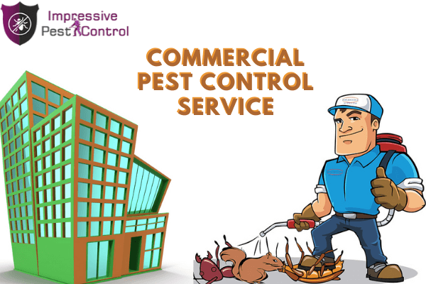 residential pest control