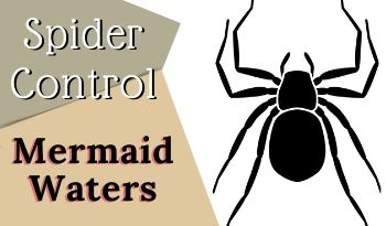 spider-control-Mermaid Waters