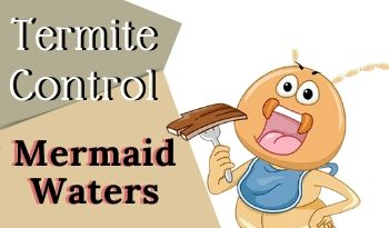 termite-control-Mermaid Waters